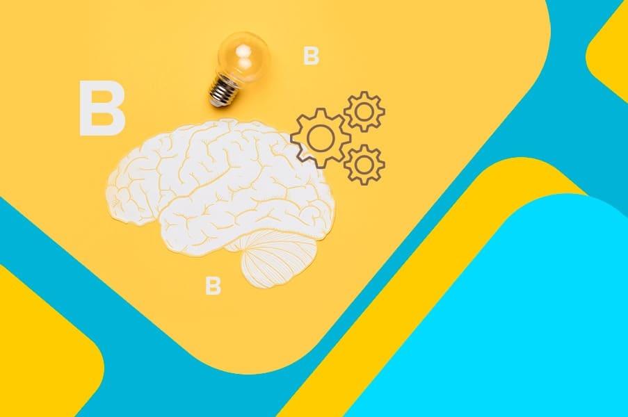 Витамины группы В и мозг: механизмы, доза и эффективность